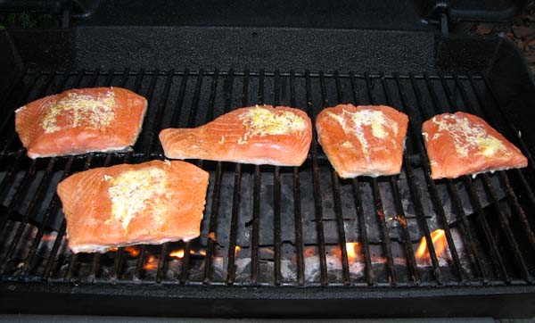 Grilled Salmon - Grill